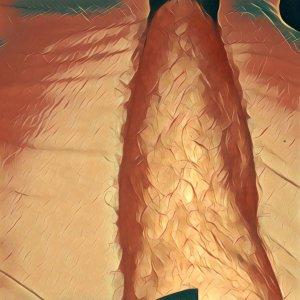 Arschhaare schneiden