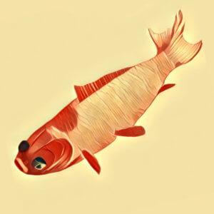 Traumdeutung Fisch