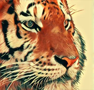 Traumdeutung Tiger