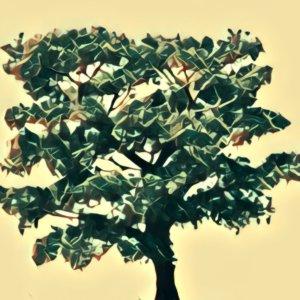 Traumdeutung Apfelbaum