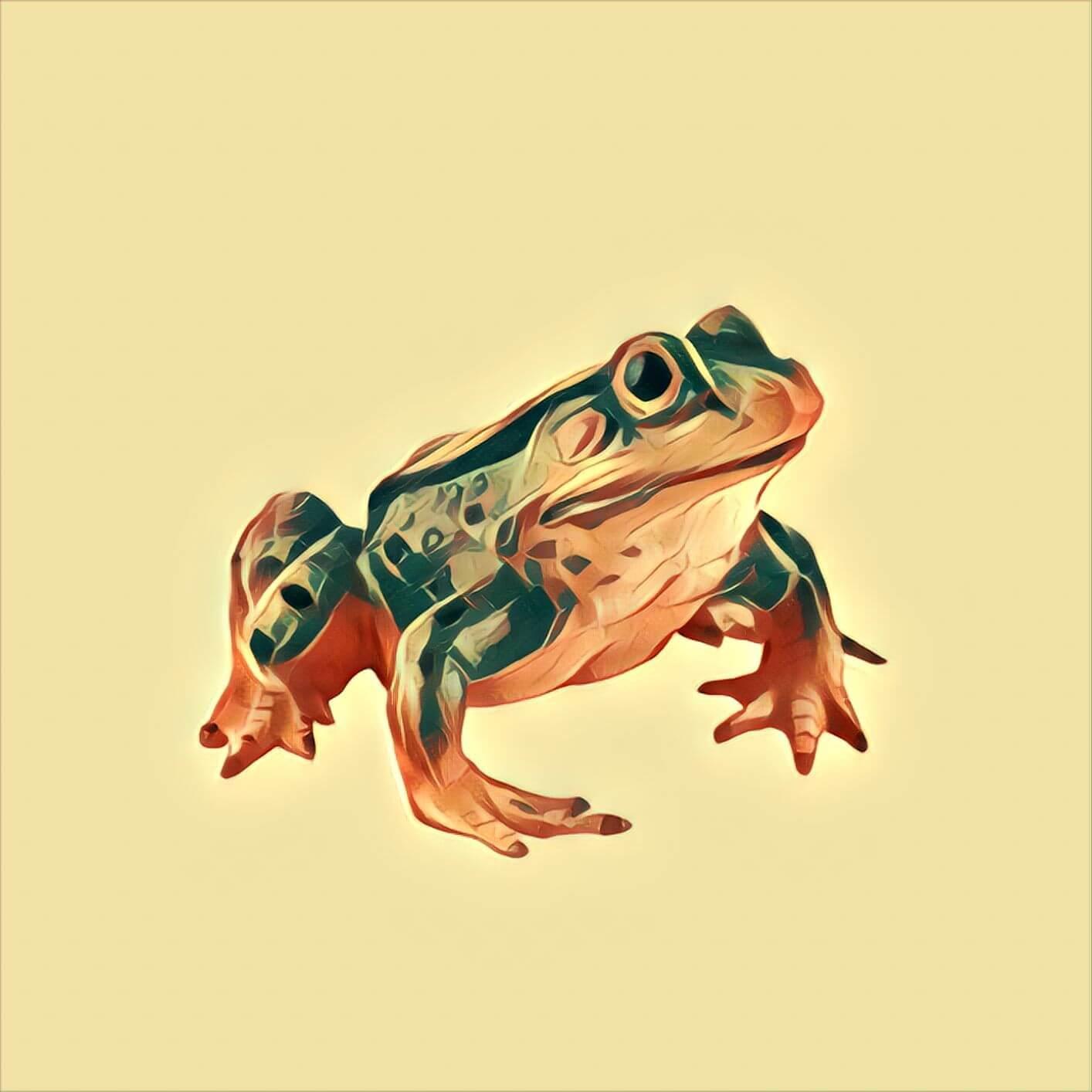Frosch Als Symbol