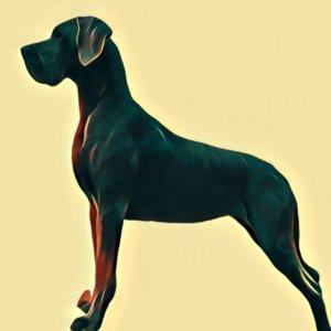 Traumdeutung Dogge
