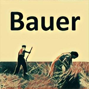 Traumdeutung Bauer