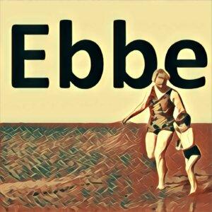 Traumdeutung Ebbe