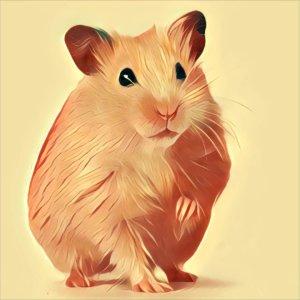 Traumdeutung Hamster
