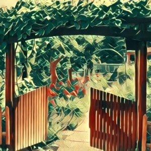Traumdeutung Garten