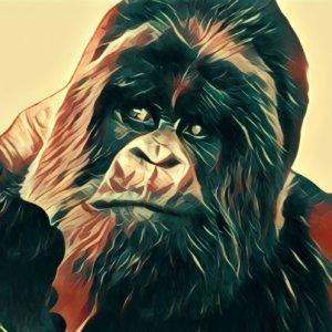 Traumdeutung Gorilla