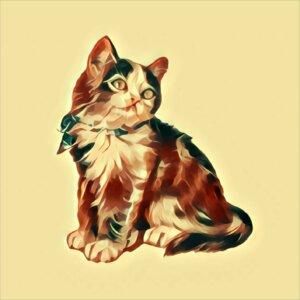Traumdeutung Katzenbaby