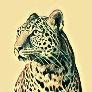 Traumdeutung Leopard