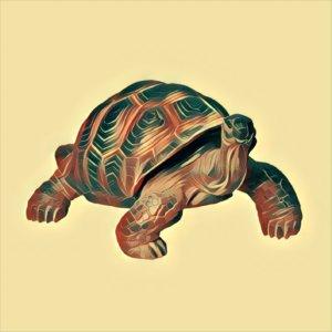 Traumdeutung Schildkröte