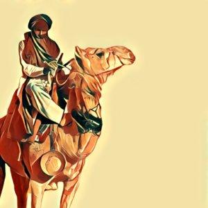 Traumdeutung Kamel