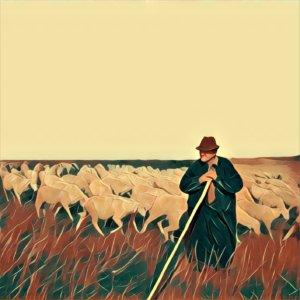Traumdeutung Herde