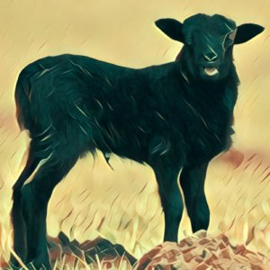 Traumdeutung Lamm