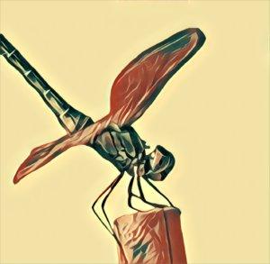 Traumdeutung Libelle