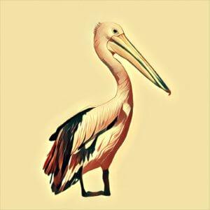 Traumdeutung Pelikan