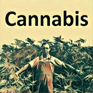 Traumdeutung Cannabis