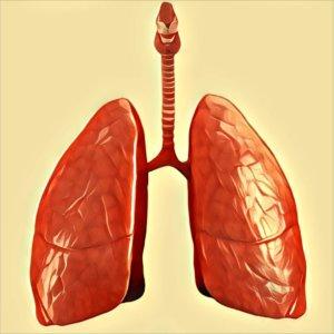 Traumdeutung Lunge