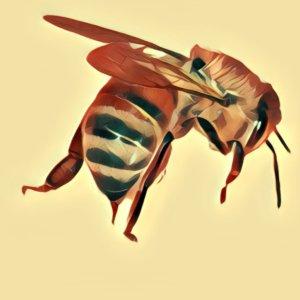 Traumdeutung Bienenstich