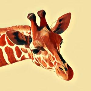 Traumdeutung Giraffe