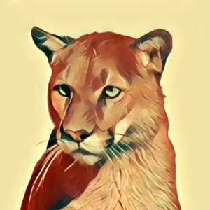 Traumdeutung Puma
