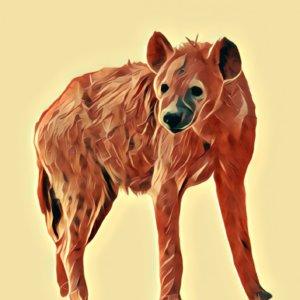 Traumdeutung Hyäne