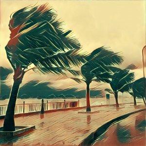 Traumdeutung Sturm
