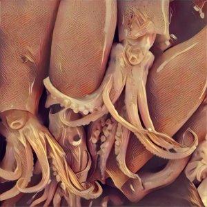 Traumdeutung Tintenfisch