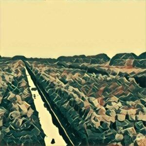 Traumdeutung Wassergraben