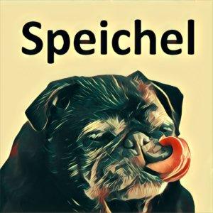 Traumdeutung Speichel