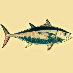 Traumdeutung Thunfisch