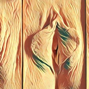 Traumdeutung Vulva