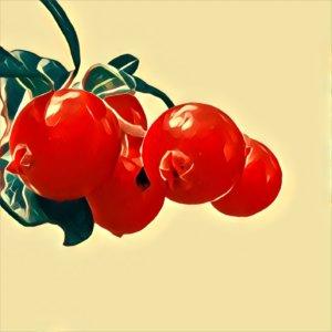 Traumdeutung Cranberry