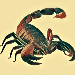Traumdeutung Skorpion