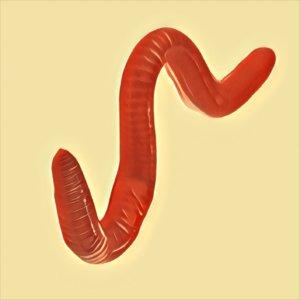 Traumdeutung Würmer