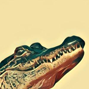 Traumdeutung Alligator