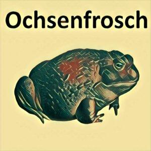 Traumdeutung Ochsenfrosch