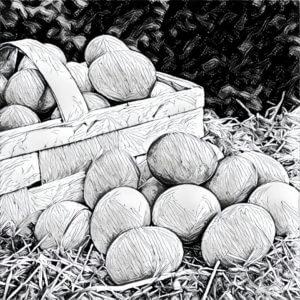 Traumdeutung Eier