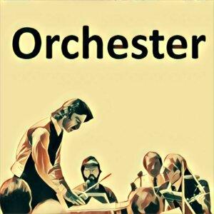 Traumdeutung Orchester