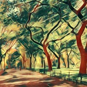 Traumdeutung Park