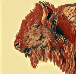 Traumdeutung Büffel