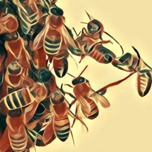 Traumdeutung Bienenschwarm
