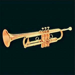 Traumdeutung Trompete