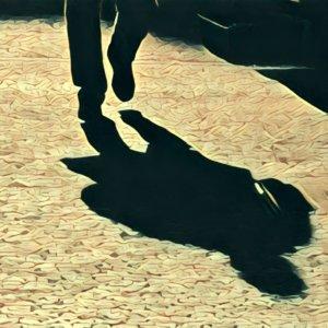 Traumdeutung Schatten