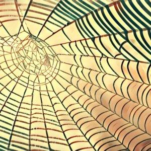 Traumdeutung Spinnweben