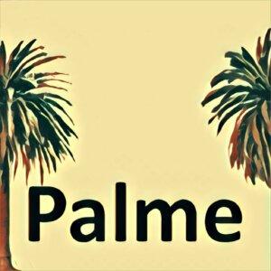 Traumdeutung Palme