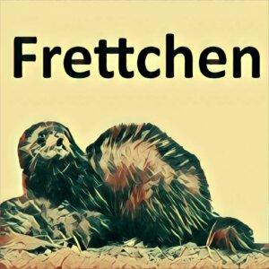 Traumdeutung Frettchen