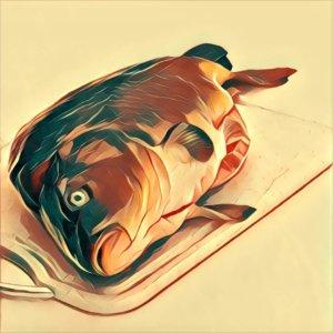 Traumdeutung Karpfen