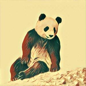 Traumdeutung Panda