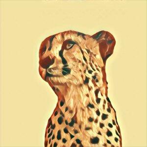 Traumdeutung Gepard