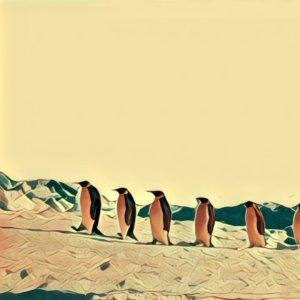 Traumdeutung Südpol